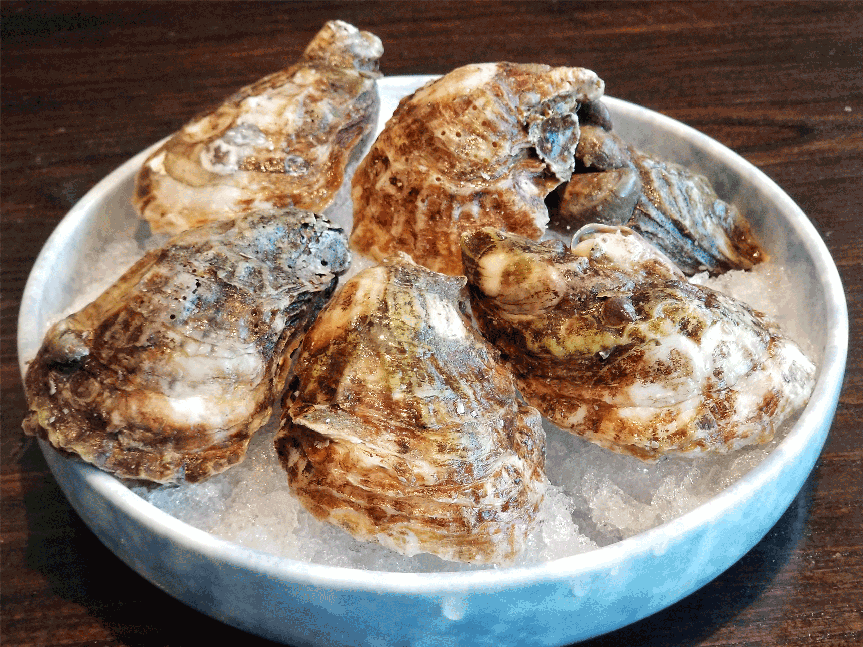 BLUE POINTE OYSTERS