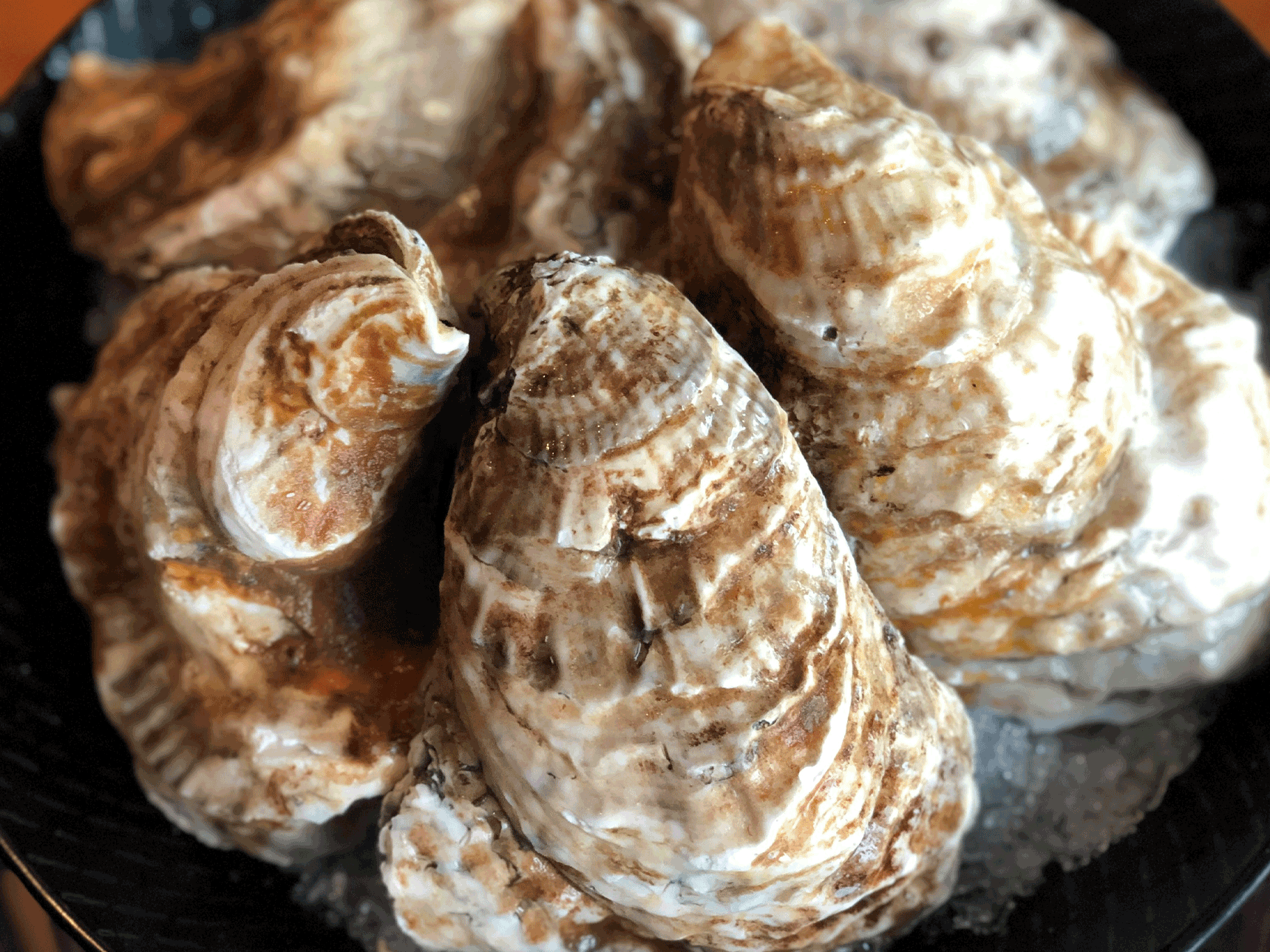KING CAESAR OYSTERS